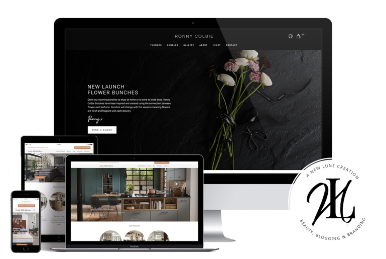 silky ocean studios - portfolio - best business wordpress themes - digital agency - new lune - web design agency
