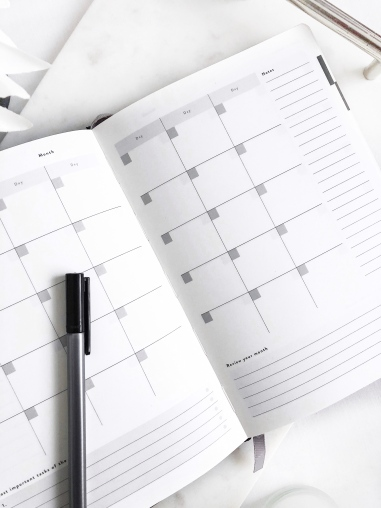 daily goal setter planner - how I plan and create content on my blog - weekly tasks - new lune - mal paper