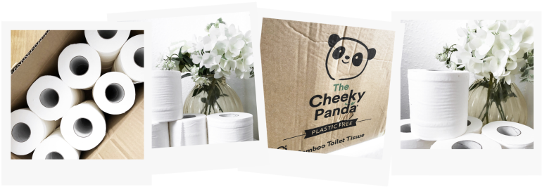 4 easy ways to live sustainably at home - the cheeky panda - toilet rolls - new lune
