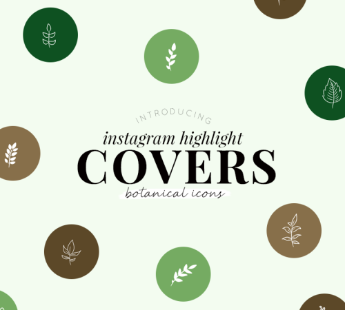 Instagram highlight covers - botanical icons - new lune studio